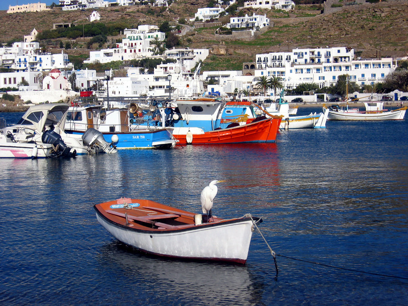 Sentry in Mykonos Harbor