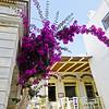 Greece 2014-409