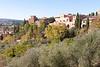111021_tuscany_0055