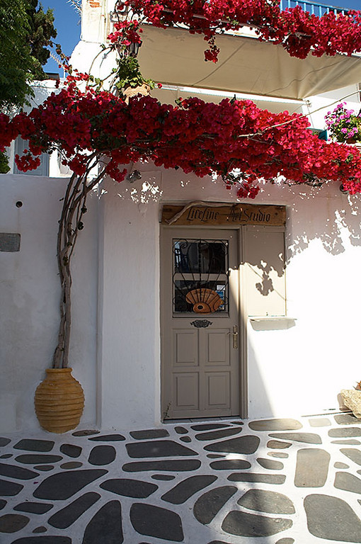 Red flowering plants are popular outside of buildings. The pot is built into the wall.
