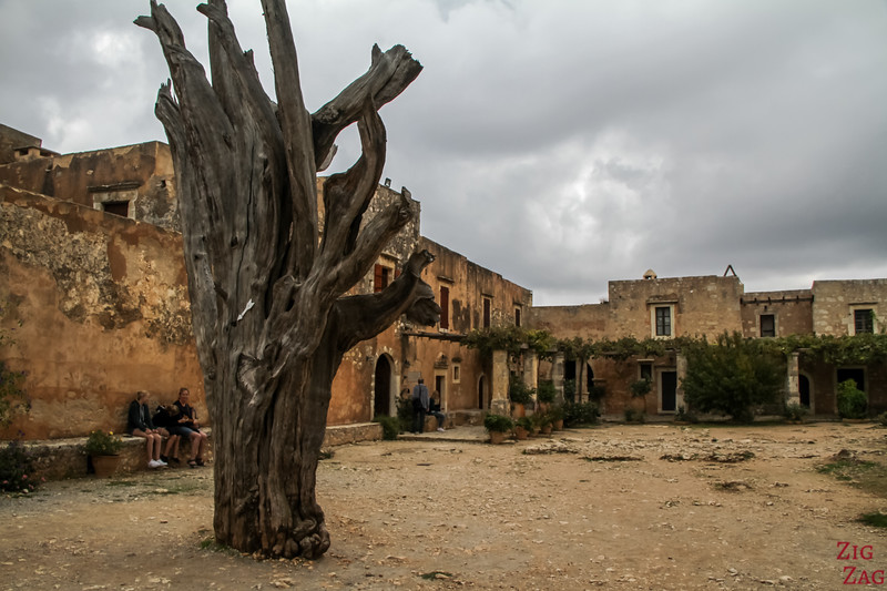 tree with bullets at Arkadi monastery Crete