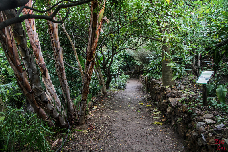 How difficult is the visit of the Crete Botanical Garden - walking path