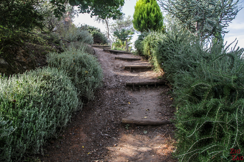 How difficult is the visit of the Crete Botanical Garden - Stairs