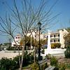 Aegina-002