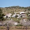 Aegina-010