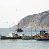 Aegina-013