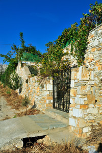 The walls of this home are covered with caper and grape vines.