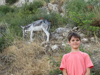 Jeremy finds a friend while climbing up Mystras, near Sparta.