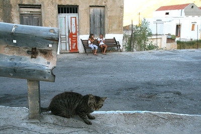 I startled this cat trying to take a photo of these girls giggling over their ice creams. Symi Island, Dodecanese, Greece.