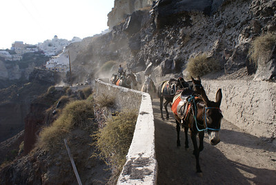 Donkey trail, Oia, Santorini, Greece