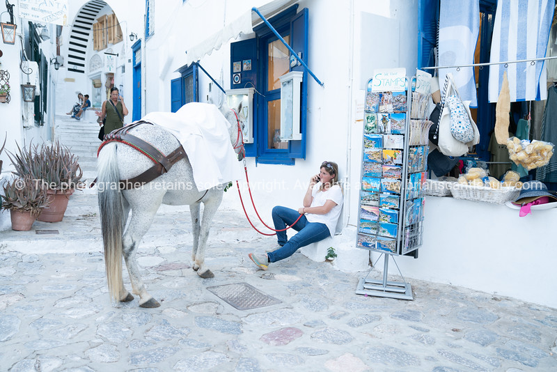 Woman in blue jeans sitting on step outside whitewashed shop with blue windows holding red reins for white horse.