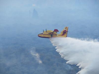 Firefighting plane over the olive groves near Delphi.