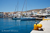 Pigeon, Boats at the Harbour, City of Ermoupolis also spelled Hermopolis, Capital of the Aegean Sea, Cyclades Islands, Island of Syros, Greece