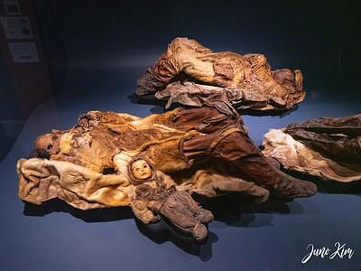 Mummies from Qilakitsoq