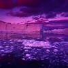 GRE - Icebergs at Sunset- IlullisatIMG_7371sm