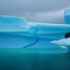 GRE - Iceberg of Qooqqut fjords - DSC00970