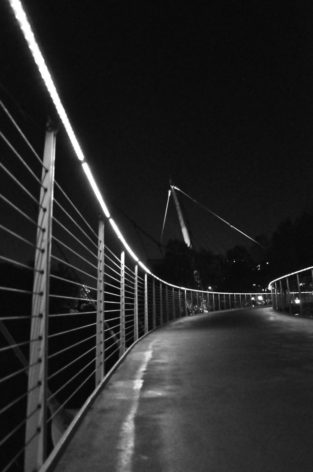 Reedy River Walking Bridge
