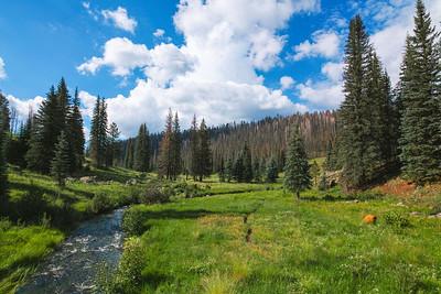 Thompson Trail