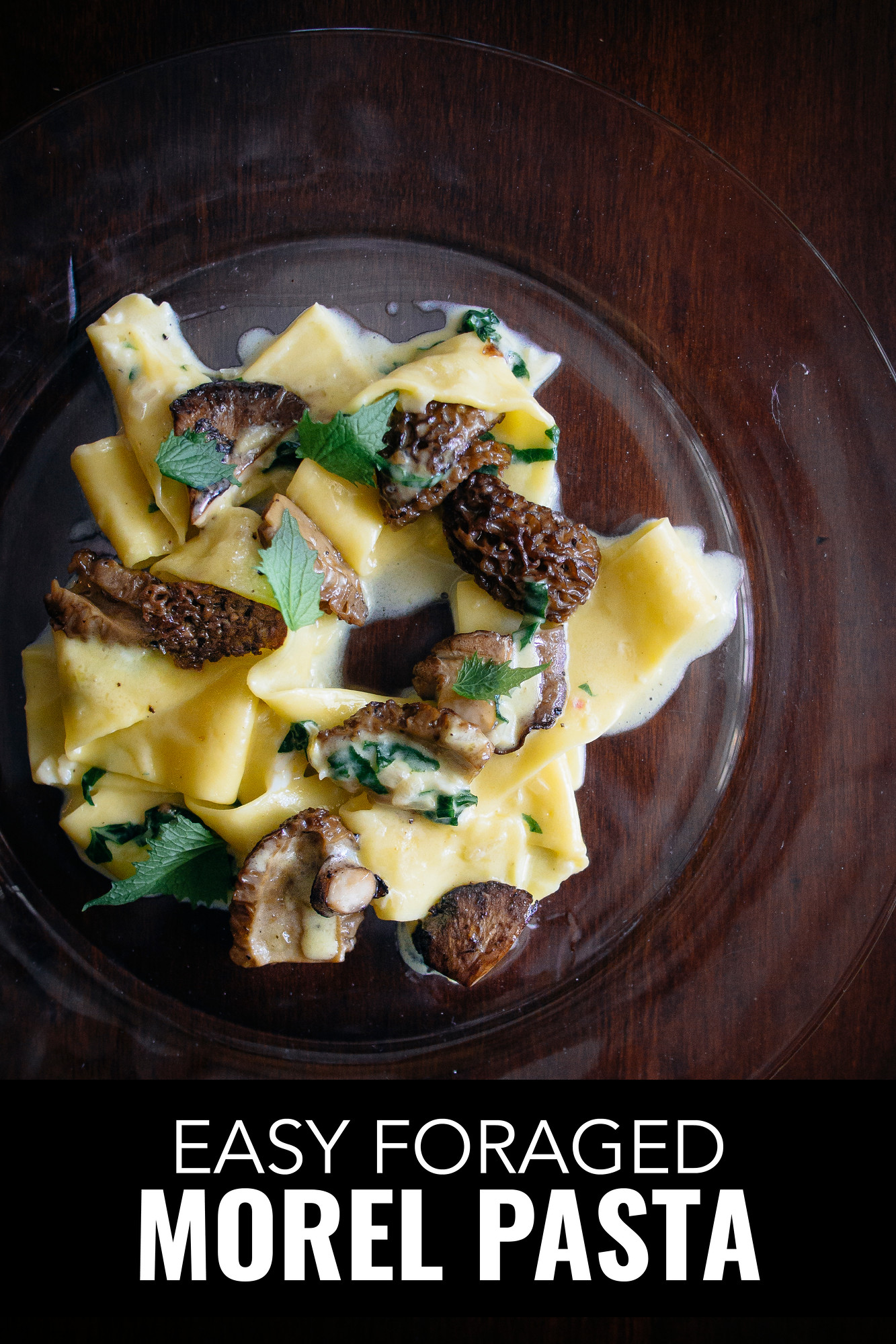 Easy morel pasta in less than 20 minutes. We capped off the day foraging mushrooms in Grey County making this easy but decadent morel pappardelle.