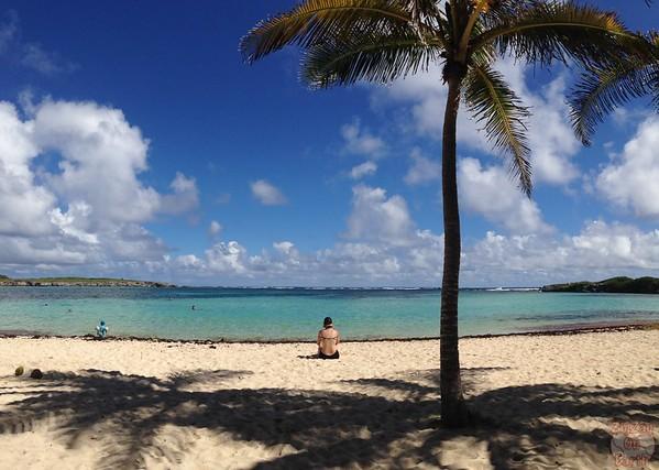 Beach Petite Terre, Guadeloupe photo 1