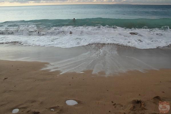 Grande Anse beach guadeloupe:  wave
