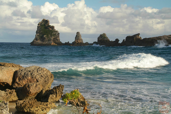 Castles Headland Guadeloupe, Pointe des chateaux photo 4
