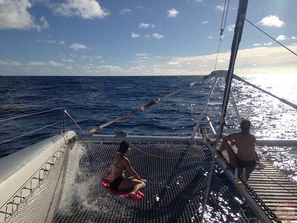 Catamaran sailing to Petite Terre, Guadeloupe photo 3