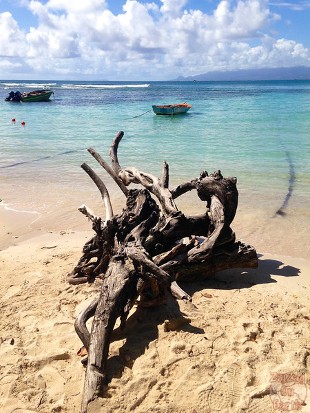 Main beach Petit Havre Guadeloupe photo 5