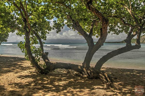 Main beach Petit Havre Guadeloupe photo 1