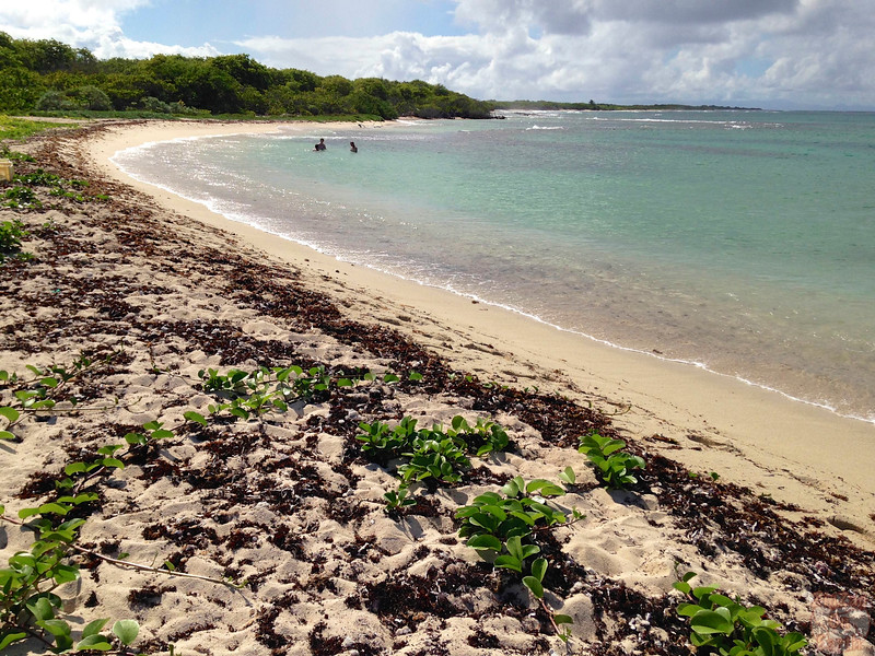 Best beaches Guadeloupe - Petite Terre 1