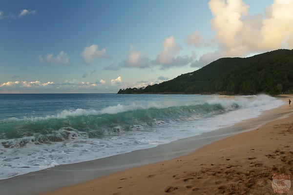 Grande Anse beach guadeloupe: crashing waves movement 1
