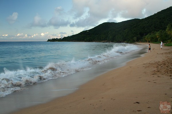 Grande Anse beach guadeloupe: crashing waves movement 4