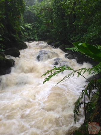 raging river Guadeloupe Basse Terre island