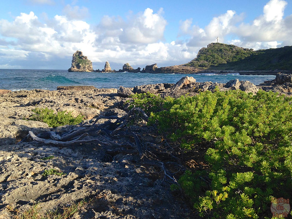 Castles Headland Guadeloupe, Pointe des chateaux photo 2