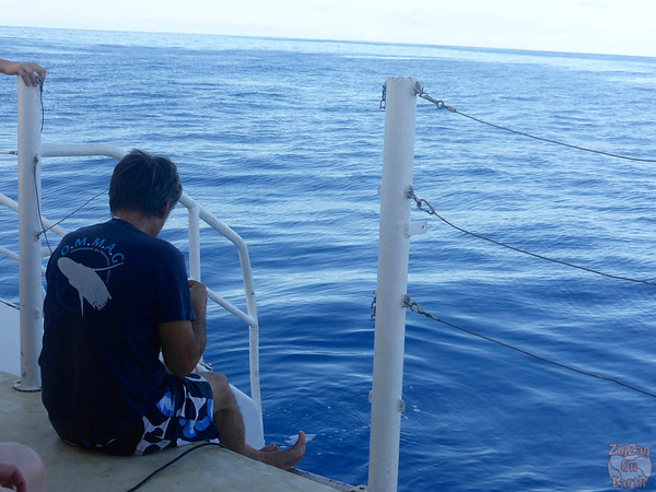 Listening for whales in the ocean, Guadeloupe orienting radar