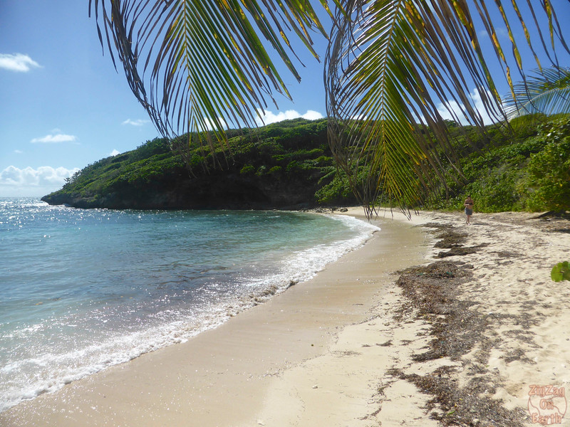 Best beaches Guadeloupe - Petit Havre 2