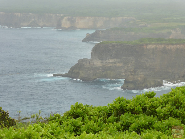View from Pointe de la Vigie Guadeloupe 2