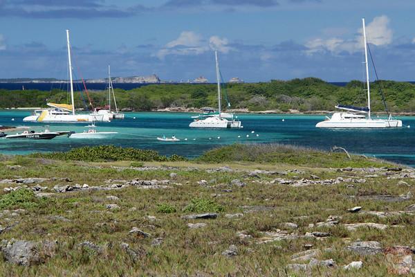 Petite Terre, Guadeloupe photo 5