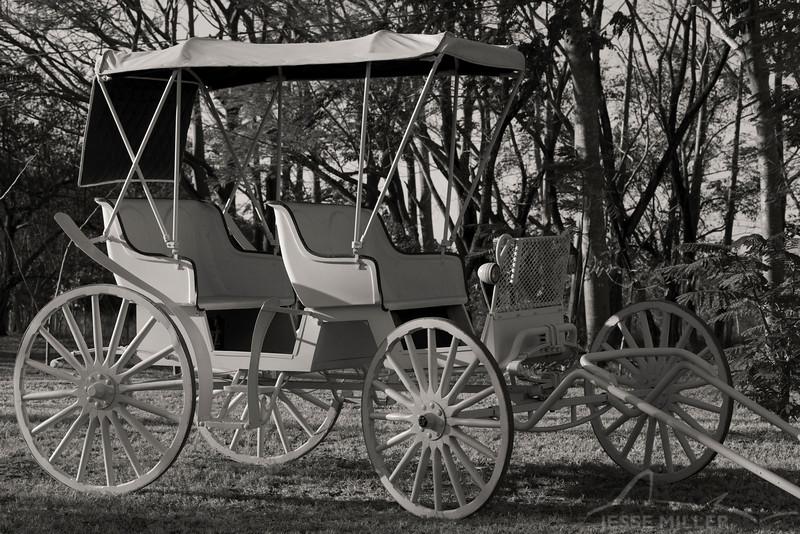 Carriage near JW Marriott