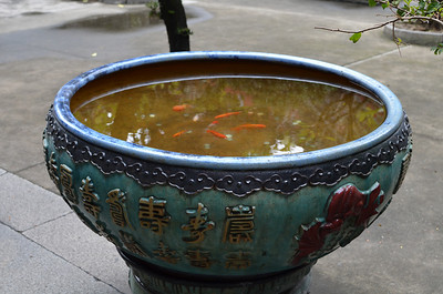 Koi fish bowl