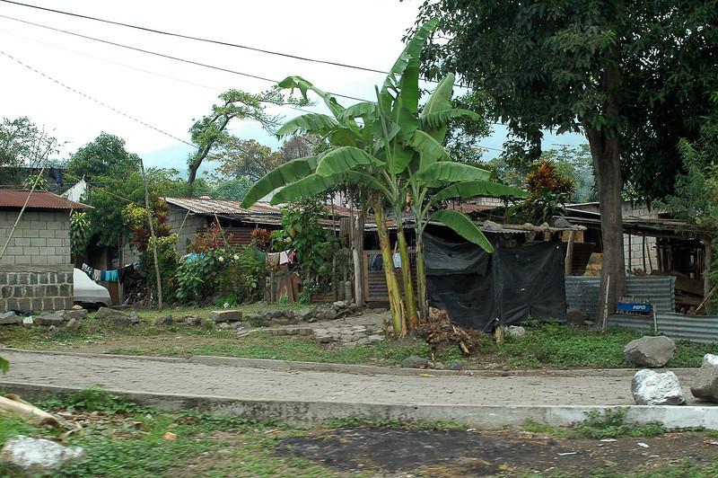 2008 Guatemala-5225