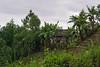 San Miguel -44-_DSC5636-18