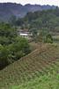 San Miguel -41-_DSC5610-16