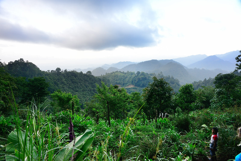 Cloud Forest, Coban, Guatemala