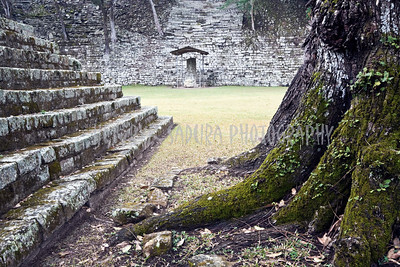 Ruins of ancient Copan - Honduras