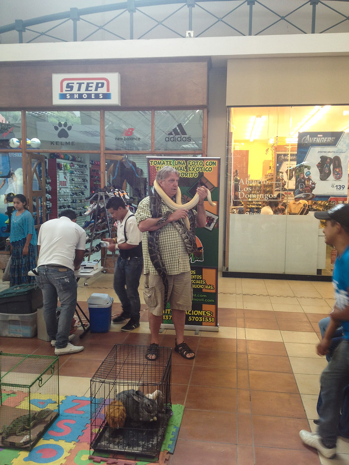 Jim loves snakes (poor snakes). Shopping mall in Coban.