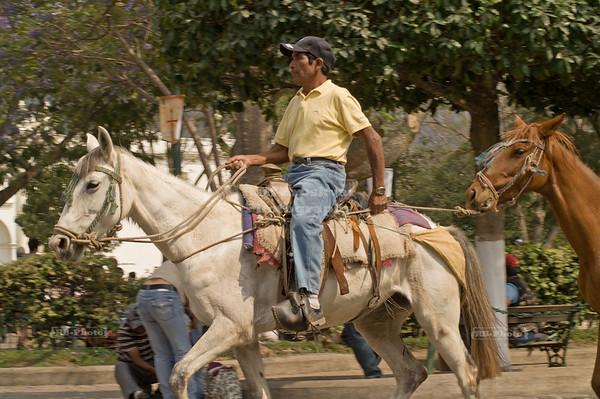 Rider with two horses La Antigua Guatemala, UNESCO World Cultural Heritage
