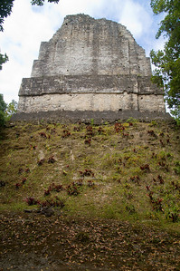 Looking up  a steep mound to the back side of Temple VI in Tikal National Park, Guatemala