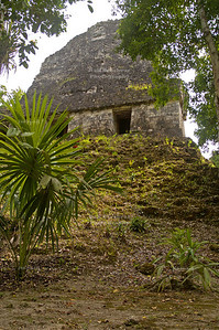 Looking up  a steep mound to Temple VI in Tikal National Park, Guatemala