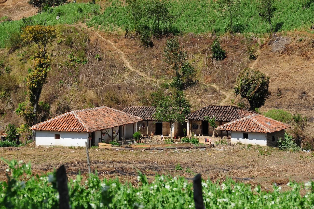 Along Hwy7W,  Guatemala